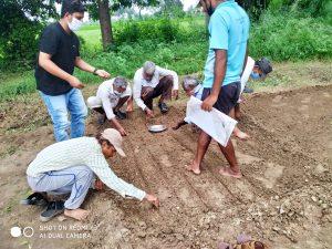 Seed Distribution Program Sanjivani